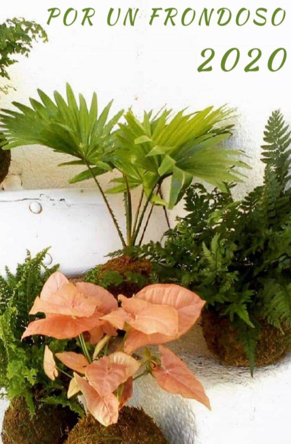 PlantPlanner 2